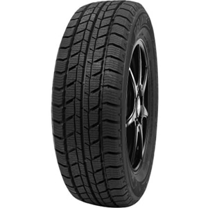 Anvelope Iarna DELINTE WD2 205/65 R16 107 T