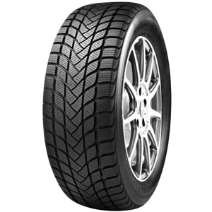 Anvelope Iarna MASTERSTEEL Winter Plus 225/50 R17 98 H XL
